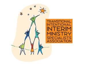 TIIMSA Logo